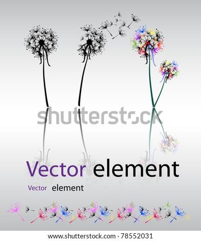 Dandelion set - stock vector