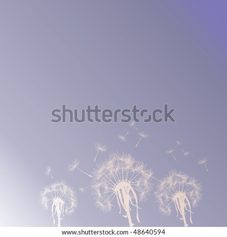 Dandelion silhouettes on the sky - stock vector