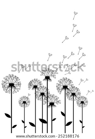 dandelion vector background botany flower blossom fluffy - stock vector