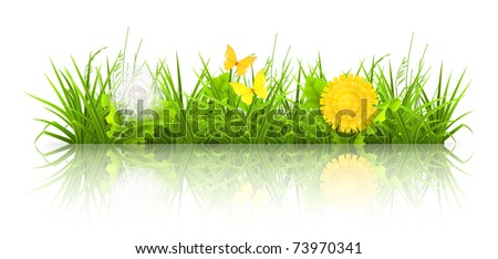 Dandelions and grass, 10eps - stock vector
