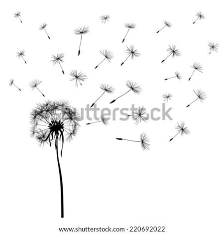 dandelions flying in the wind - stock vector