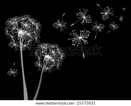 dandelions in wind - stock vector