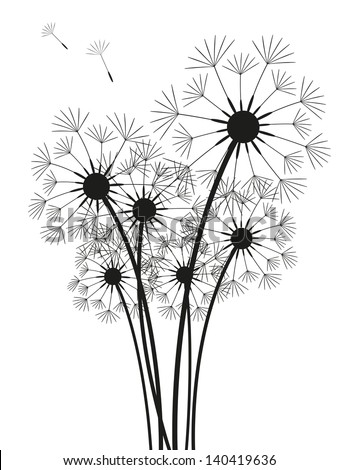 Dandelions silhouette isolated on white - stock vector