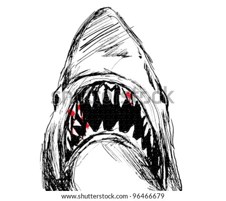 Dangerous shark - stock vector