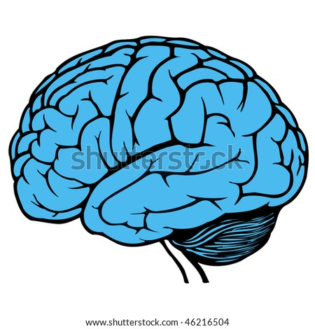 dark and light blue human brain - stock vector
