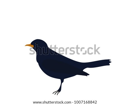 Songbird Silhouette Stock Images, Royalty-Free Images ...