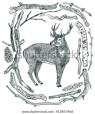 December Deer in a winter forest Frame of Driftwood Wild wild woods Sketch style Hand drawing - stock vector