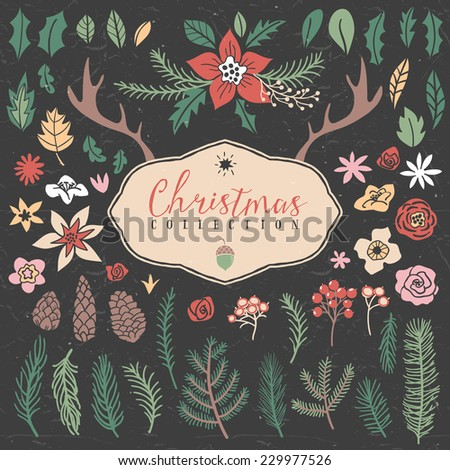 Decorative plant items. Christmas collection. Hand drawn illustration. Design elements. - stock vector