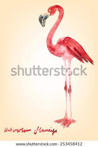Decorative watercolor flamingo for your design - stock vector