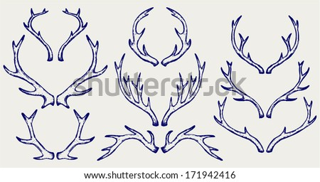 Deer horns. Doodle style - stock vector