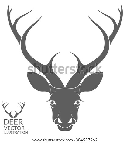 Deer. Isolated animal on white background