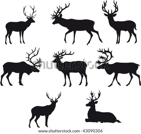 Deer vector - stock vector