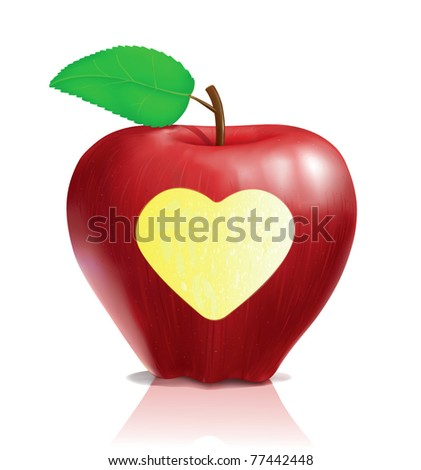 delicious realistic red apple vector with heart shape