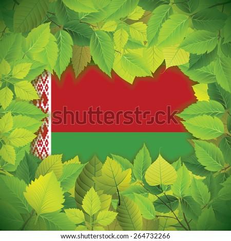 Dense, green leaves over the flag of Belarus - stock vector