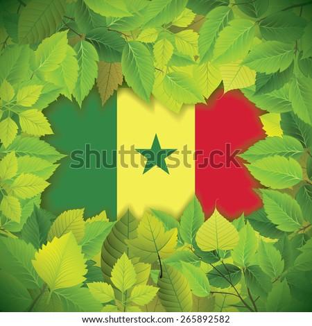Dense, green leaves over the flag of Senegal - stock vector