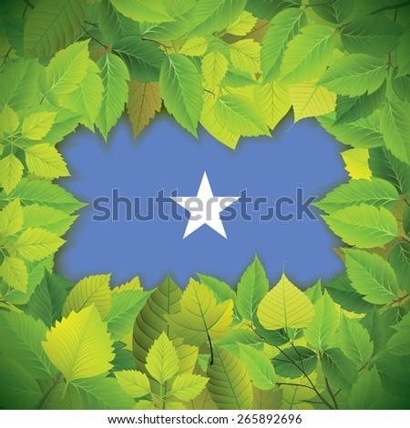 Dense, green leaves over the flag of Somalia - stock vector