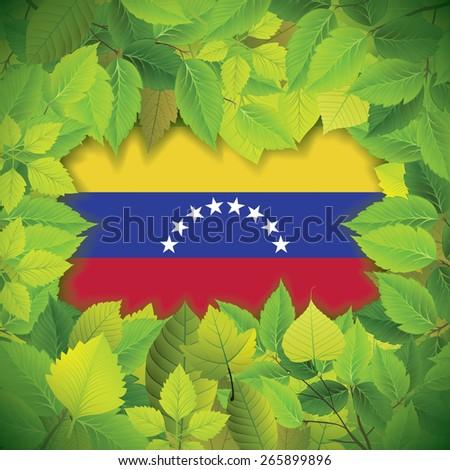 Dense, green leaves over the flag of Venezuela - stock vector