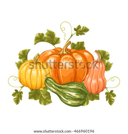 Design element with pumpkins. Decorative ornament from vegetables and leaves.