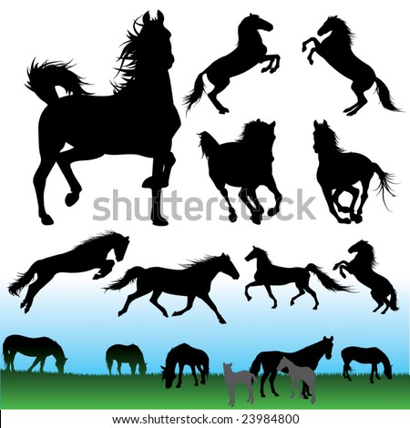 detail horse silhouette collection - stock vector