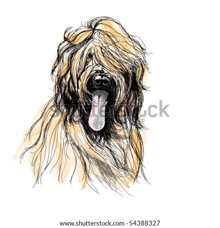 Detail of hairy dog. - stock vector