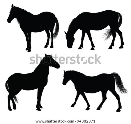 Detailed horse silhouettes collection 7000x6329. Vector eps8 - stock vector