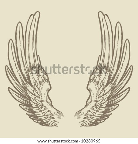 Detailed Wings - stock vector