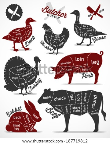 Diagram Guide for Cutting Meat in Vintage Style - stock vector