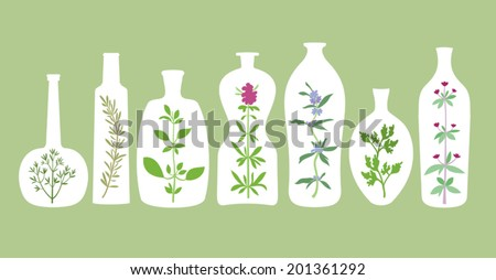 Different bottles silhouettes with various aromatic herbs inside. Abstract extracts with dill, basil, oregano, hyssop, parsley, savory, rosemary. Design elements for cooking or homeopathic ideas. - stock vector
