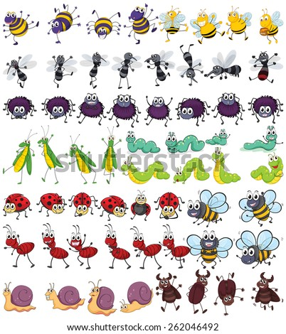 Different kind of small insects - stock vector