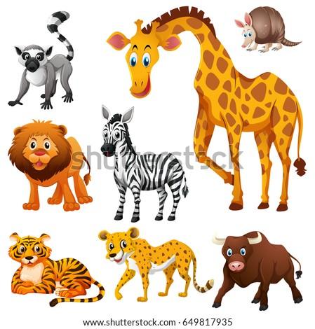 different kinds wild animals illustrationのベクター画像素材