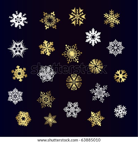 Different snowflakes vector - stock vector