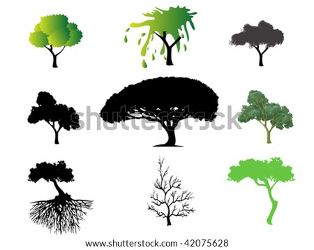 different type of trees
