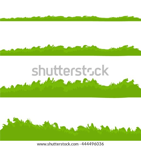 Different types of grass isolated on white background