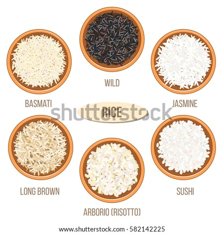 Different Types Rice Ceramic Bowls Basmati Stock Vector