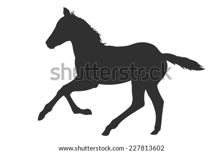 Digital illustration vector of a filly colt shadow silhouette
