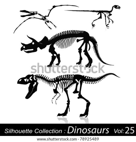 Dinosaurs and Fossils - stock vector