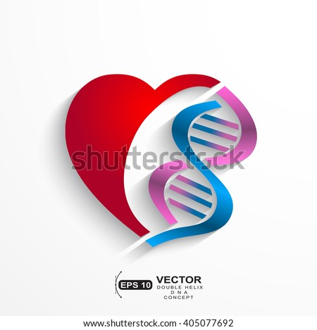 DNA concept.Heart with double helix symbols for medicine, genetics,biology concept - stock vector