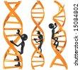 DNA Ladder - stock photo