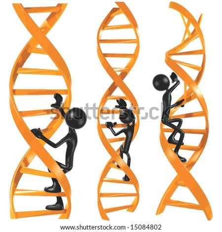 DNA Ladder - stock vector