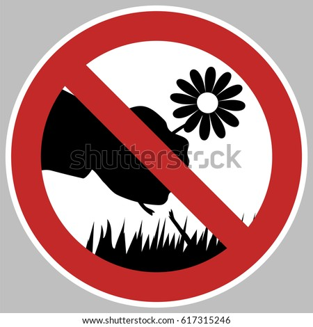 No Flower Picking Images Stock Photos amp Vectors