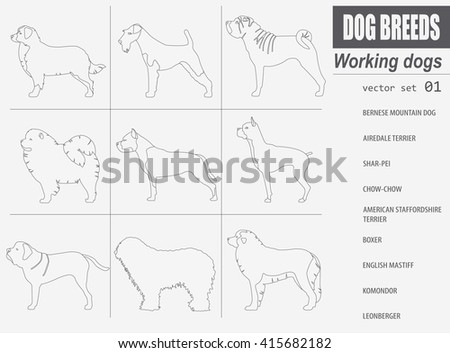 Dog breeds. Working (watching) dog set icon. Flat style. Vector illustration - stock vector