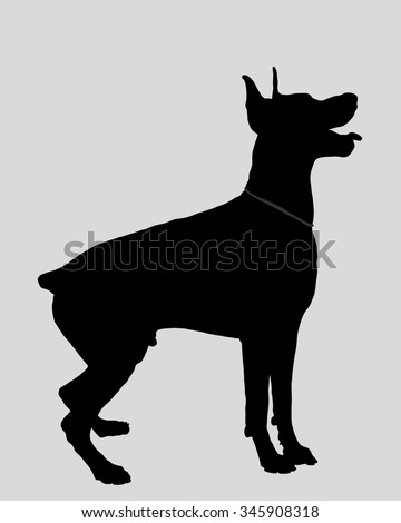 dog doberman silhouette vector illustration