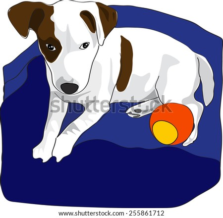 Dog illustration - Jack Russel Terrier puppy lying in blue bed with orange ball - stock vector