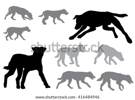 Dog. Puppy walking. Silhouette on a white background