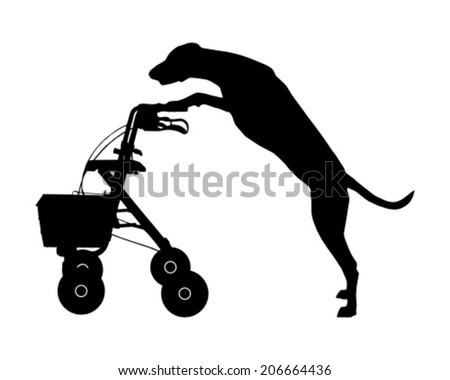 Dog pushes rollator - stock vector