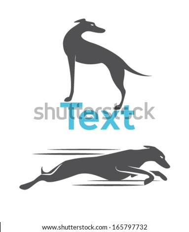 Greyhound Stock Images, Royalty-Free Images & Vectors ...