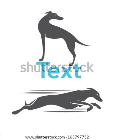 Dog silhouette, greyhound racing dog - stock vector