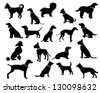Dog Silhouettes. EPS 8 vector, grouped for easy editing. No open shapes or paths. Dog breeds, veterinary, dog walking, pet sitting logo inspiration. Dog show, competition, pet store, guide dog - stock vector