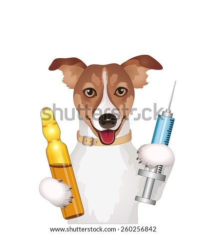 Dog with syringe and ampoule vector illustration isolated on white background  - stock vector