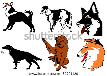Dogs a silhouette and a head colour a collection on a white background - stock vector